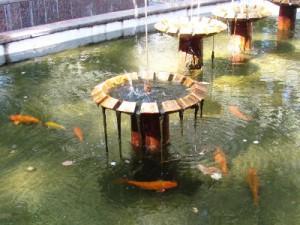 Рыбок из фонтана у памятника Пушкину выловили и отправили на зимовку