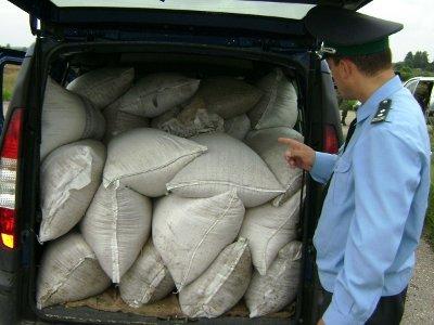 Двадцать тонн белорусских яблок и фуража вернули на родину