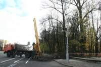 В Смоленске продолжается реконструкция сквера Блонье