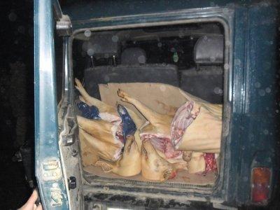 Белорусы пытались нелегально ввезти на Смоленщину две машины мясопродуктов