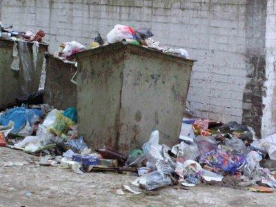 Власти Смоленска намерены кардинально изменить систему вывоза мусора