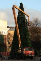 Где в Смоленске установят елки