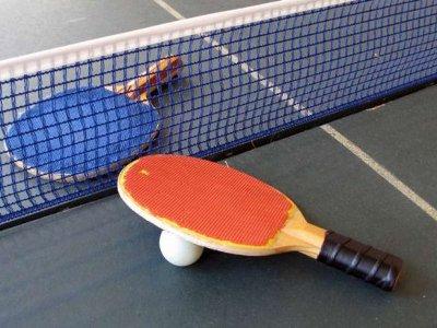 В Смоленске прошел областной чемпионат по настольному теннису