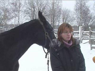 На условия содержания лошадей частной владелицы пожаловались в Россельхознадзор