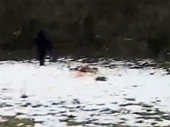 Поимка снежного человека в Ингушетии оказалась рекламной акцией