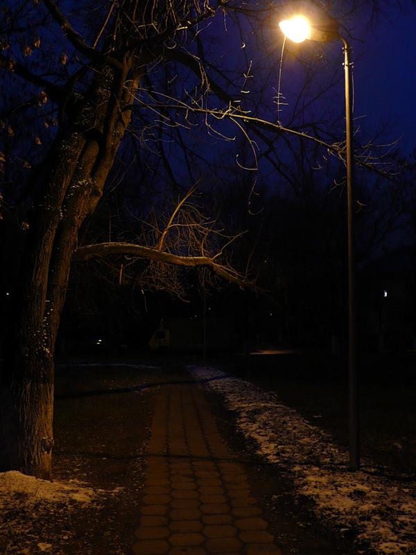 Мэрию завалили жалобами на плохую освещенность смоленских улиц