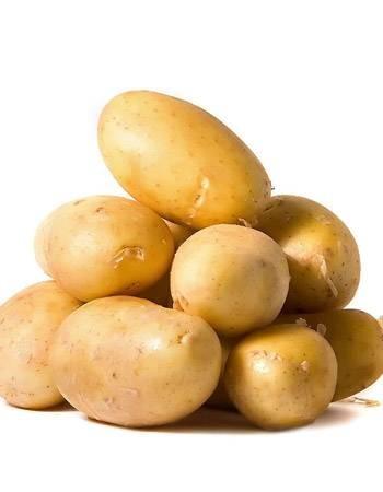На Смоленщину ввезли более четырехсот тонн импортных семян