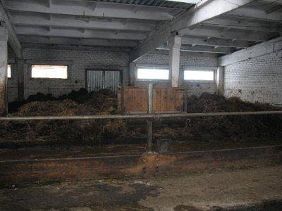 Смоленскую молочную ферму закрыли на месяц за антисанитарию