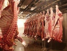 В Смоленске негде утилизировать некачественное мясо