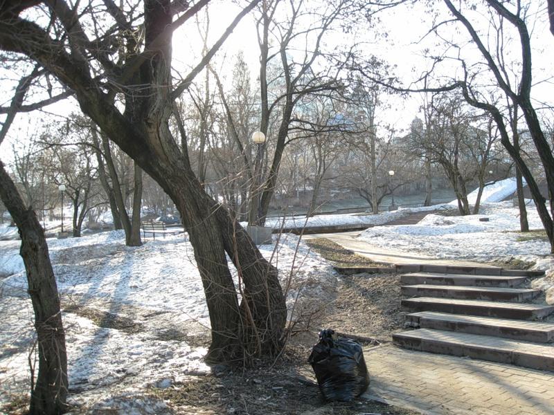 Городские власти задумались о сохранении скверов в Смоленске