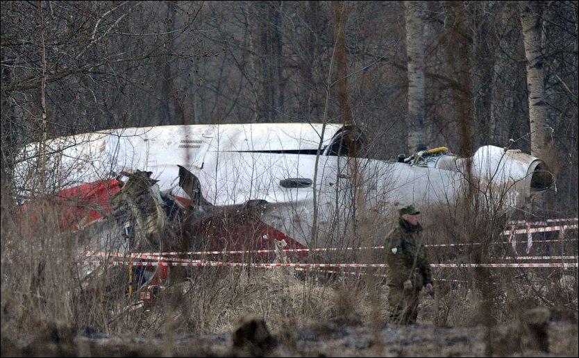 Смолянин предложил польским чиновникам в подарок обломки самолета