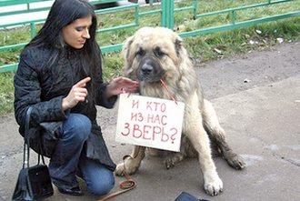 В Смоленске проходит благотворительная акция «Стольник»