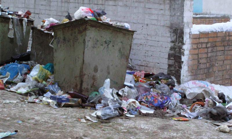 Роспотребнадзор призвал коммунальщиков очистить город от песка, мусора и крыс