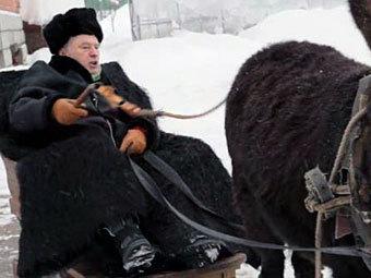 Жириновский избежал суда за издевательство над ослом