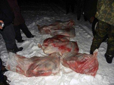 В новодугинском лесу обнаружили три хранилища незаконно добытого мяса