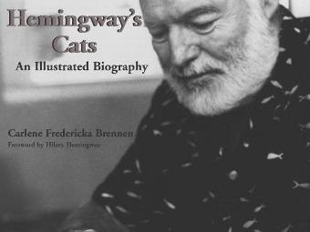 Хемингуэй признался в убийстве любимого кота