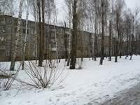 В Смоленске вместо рощи появится торговый центр?
