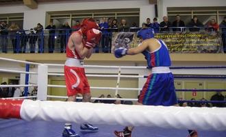 Смоленские боксеры взошли на пьедестал в Витебске