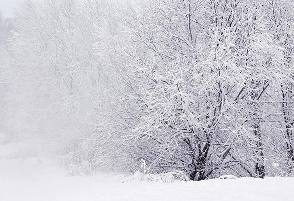Апрельский снег в Смоленске растает не скоро