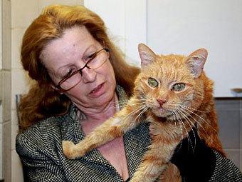 Пропавший 16 лет назад кот воссоединится с хозяйкой