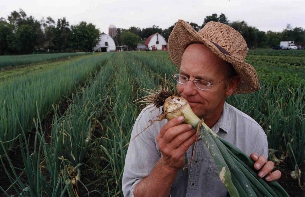 Начинающие фермеры смогут получить полуторамиллионные гранты