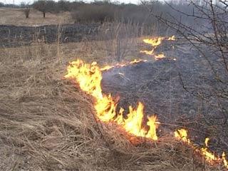 Сжигание мусора и сухой травы смолянами приводит к пожарам