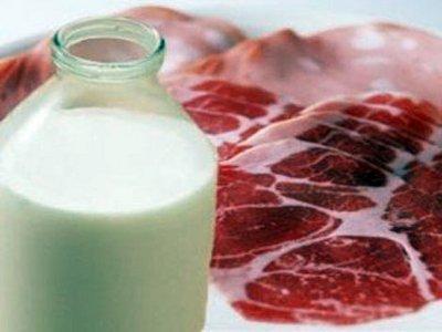 Местные хозяйства увеличили выпуск мяса и молока и снизили производство яиц