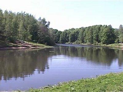 Реадовское озеро таинственным образом наполнилось