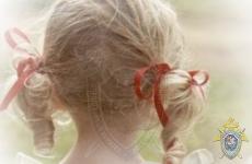 Гражданин Республики Беларусь подозревается в совершении развратных действий в отношении малолетней