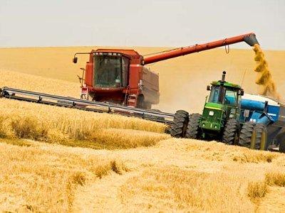 Недофинансирование сельского хозяйства затормозило уборку урожая