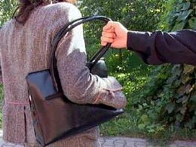 План «Перехват» помог поймать серийных охотников за дамскими сумочками