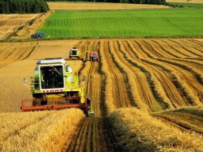 В агропром региона планируют вложить около восьми миллиардов рублей