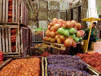 Для сбыта продукции смоленских аграриев построят логистический центр