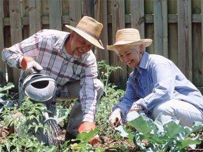 Садоводов и огородников Смоленщины поддержат рублем