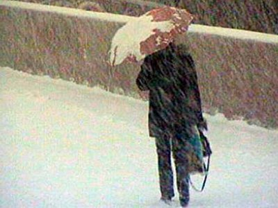 В Смоленске объявили штормовое предупреждение
