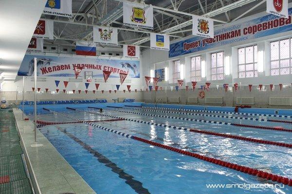 Смоленский «Дельфин»: 54 миллиона рублей за 12 лет