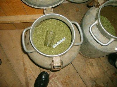 У главаря наркобанды нашли оружие и три бидона марихуаны
