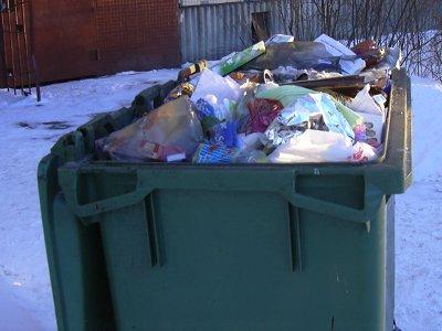 Мать двоих детей выкинула новорожденного в мусорный ящик