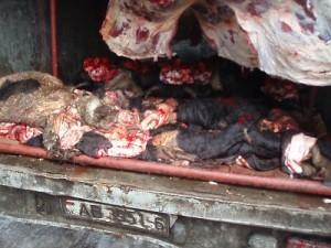 Белорусы пытались накормить смолян мясом неизвестного происхождения