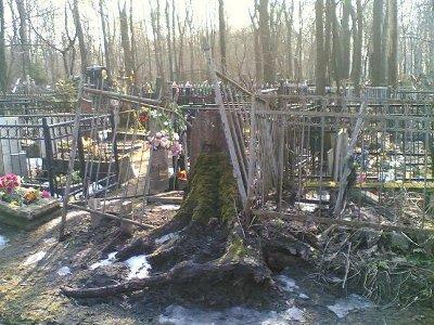 Бесхозные кладбища в Вязьме грозят экологической катастрофой
