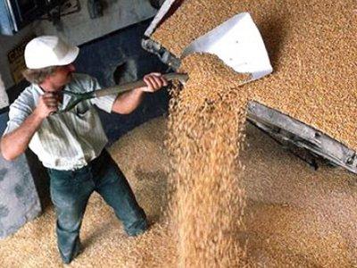 Половина аграриев, и без того самых низкооплачиваемых, не получает денег в срок
