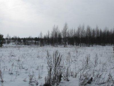 Сафоновское хозяйство обязали возделывать заброшенные земли