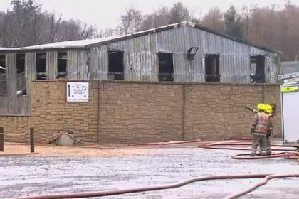 В шотландском зоопарке сгорели десятки питомцев