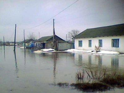 Из-за паводка на Смоленщине начало затапливать улицы и дома