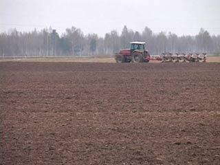 Смоленские сельхозпроизводители получат финансовую помощь из федеральной казны