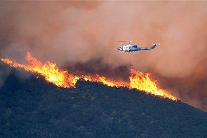 Тысячи калифорнийцев эвакуированы из-за лесного пожара