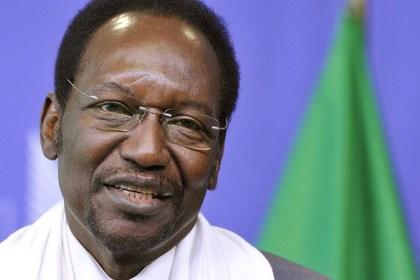 Названа дата президентских выборов в Мали