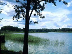 В Смоленском Поозерье устроят путешествие с погружением в древность