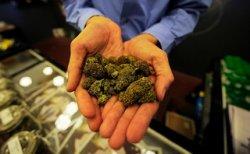 В Смоленской области водитель прятал марихуану под сидением