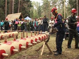 Смоленские лесорубы соревновались за звание лучшего